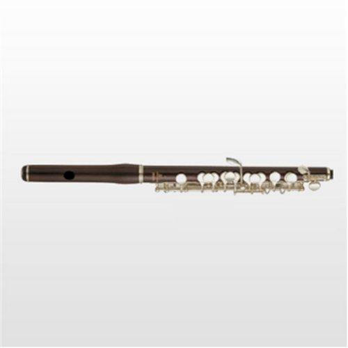 天津短笛YPC-91